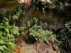 Cascata Diosilla